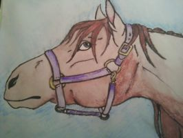 WaterColor Horse by ToxicDragonBlood