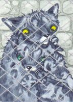 ACEO - Twiggie and Thistle by KootiesMom