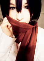 Mikasa Cosplay by BloodyShion