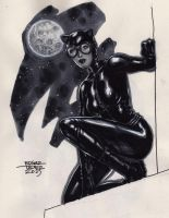 Catwoman - Copic by edtadeo