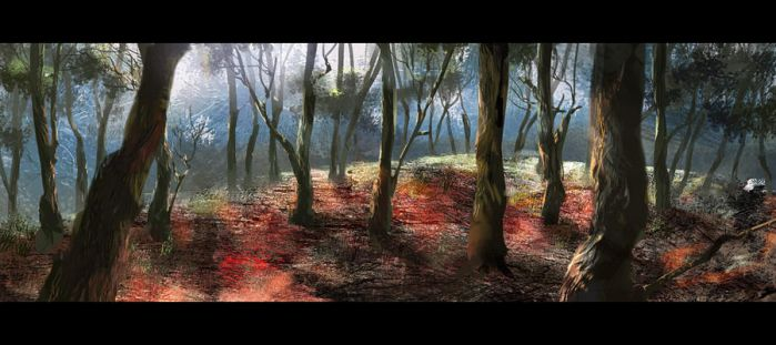 Forest_ by amatoy