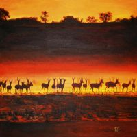 Savana - sunset II. by t-Werca