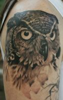 owl for jenny by PaintedPeople