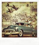 50's Game Drive 2 by hogret