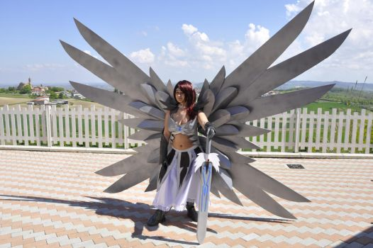 Erza Scarlet Cosplay 02 by HellDolly