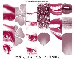 PHOTOSHOP BRUSHES : beauty by darkmercy