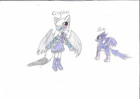 My sonic-sona and Zoe ref by mysterydragoness