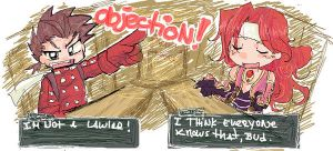 TOS OBJECTION by T3hb33