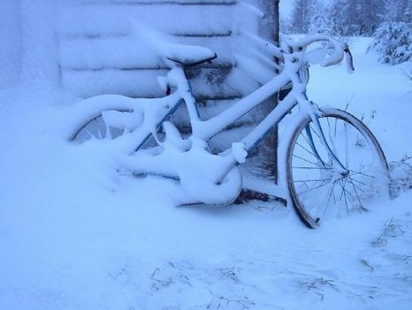 Shoulda put the bike in by Winteryears