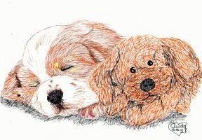 Puppy with Teddy by Cindy-R