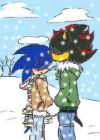sonadow in the snow by guchi-22