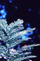 |Feel The Cold| by TimeLocket