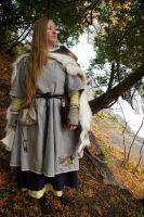 Viking outfit by erzebeth-rouge