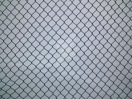 Wire-Mesh Fence by Limited-Vision-Stock