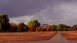 Hyde Park Overview (HD Wallpaper) by Pimpernel