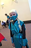 Rhode Island Comic Con 2014 - Frost by VideoGameStupid