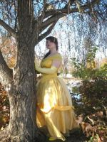 Beauty and the Beast: Belle by NailgunInk