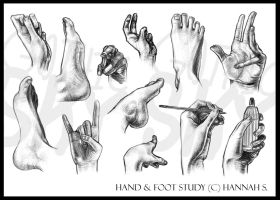 Hand and Foot Study by GothicSky