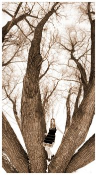 willowy winter by aeravi