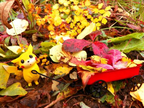 Let's Gather Leaves, Pikachu! by Bimmi1111