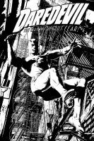 Daredevil BW by julioferreira