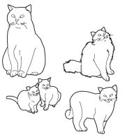 Cat Lineart Set 4 by CrystalKoopa42
