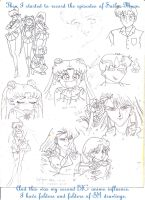 23. SAILOR MOON OBSESSION 1 by maesesag