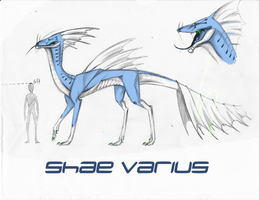 Shae Varius Ref Sheet by RandomeDragon