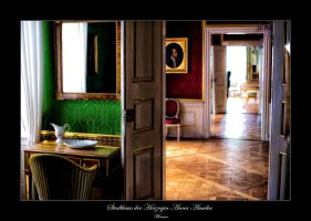 Weimar 3 by calimer00