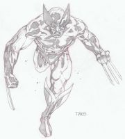 Wolverine running by timothygreenII