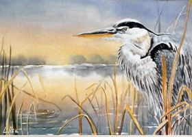 Great Blue Heron by happytimer