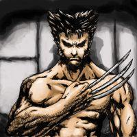 The Wolverine - X-men by stryfers