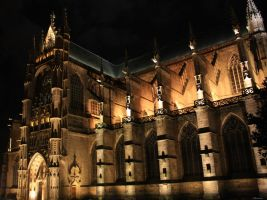 Cathedral II by Alheimia