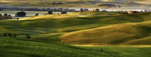 Val d'Orcia 6 by CitizenFresh