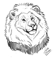 Lion sketch by TheMysticWolf