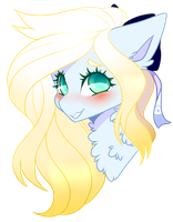 Stars in your eyes by Scaevitas