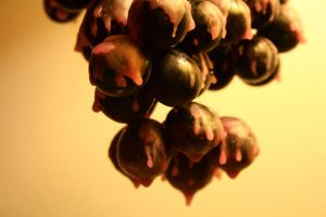 Melting Grapes by DrivenSphere