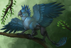 AFC SS: Chira by AltairSky