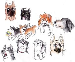 Ginga sketches by Gingastar18