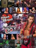 Shawn Michaels Collage by WWE-Undertaker