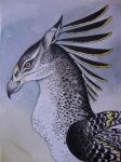 Hippogriff by verreaux