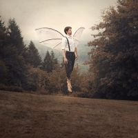 The Art of Flying by parvanaphotography