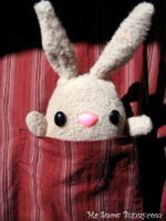 Pocket Bunny by csgirl
