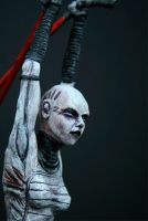Asajj Ventress updated photo by futantshadow