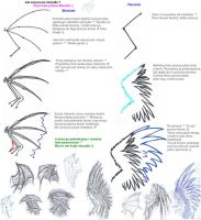 How to draw wings by 1993Mariola