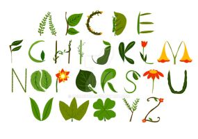 Typography - leaf and flower by lunaetha