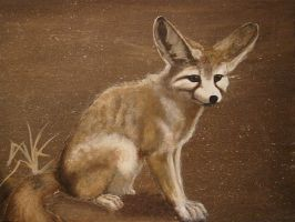 Fennec Fox by theclumsycorvid