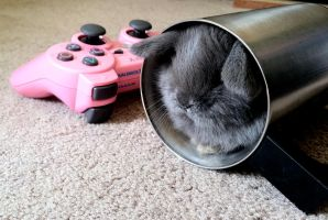 Gamer Bunny by nenglehardt