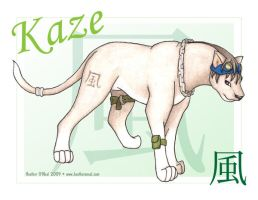 Kaze in color by stormwhisper02