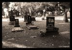 Russian Family Plot by LetsAllBeNuerotic